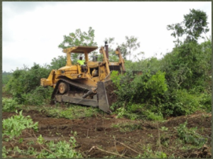 (Francis talked a local mining company into using its bulldozer to clear the land for the school.)