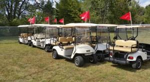 Gold Cart Shuttles