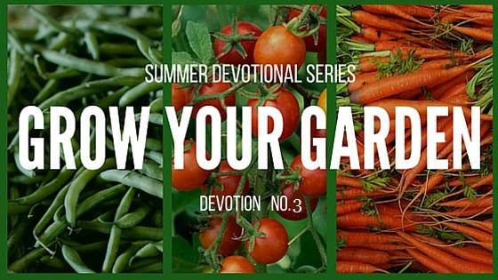 Garden-Devo-3